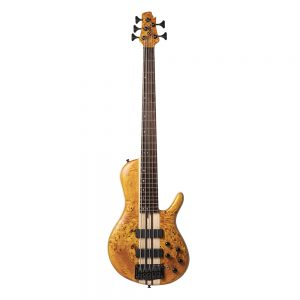 Cort Artisan A5-AOP Electric Bass