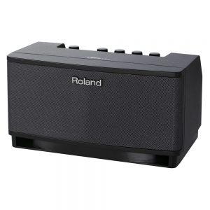 Roland CUBE-LT-BK Cube Lite Guitar Amplifier
